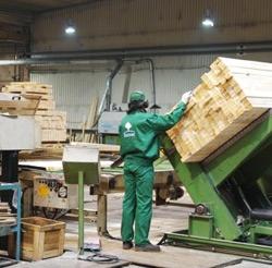 Poważnie Polski producent pelletu drzewnego wysokiej jakości - Stelmet SI36